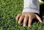 Искусственная трава (нарезка)